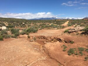 RV life, RV travel, Camping, BLM land, ruts, nature,