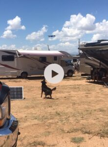 drone, pets, dog, chasing drone, RV life, RV travel, glamping, Camping, Santa Fe, NM, New Mexico